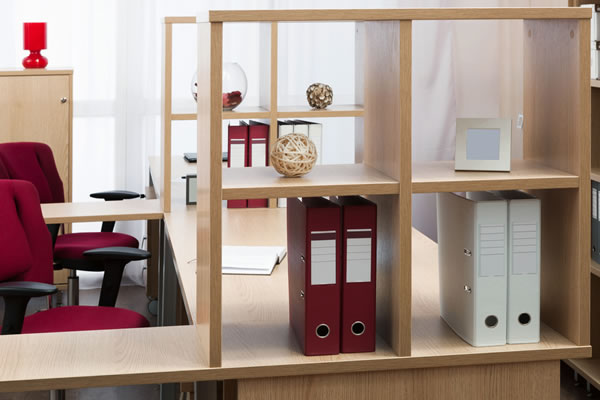 Office Desk and Shelving